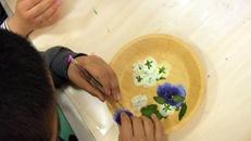 いきいき教室 押し花