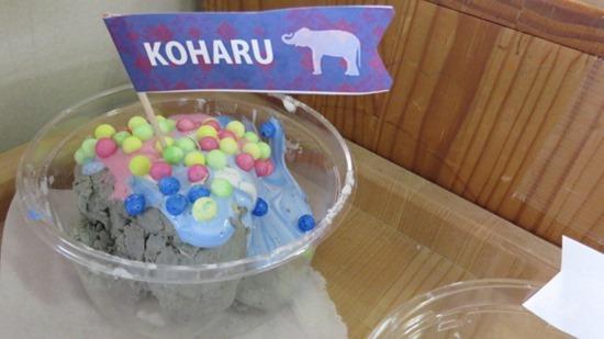 アイスクリームやさんごっこ (17)